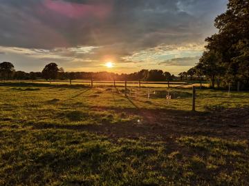 idyllischer Stellplatz auf einem Bauernhof