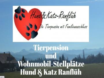 Hund & Katz-Ranflüh